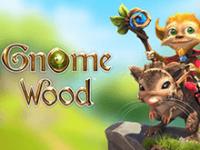 Игровой автомат Gnome Wood